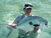 permit on buggs