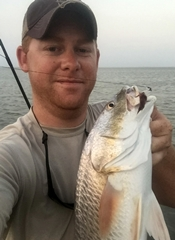 redfish, curl-tail jig
