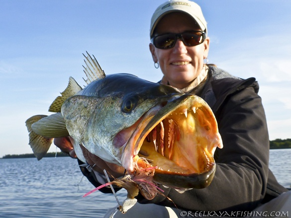 dee kaminski, beastie bugg, gator trout