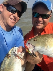 buggs lures, double redfish