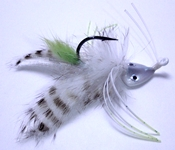 white stripe beastie bugg