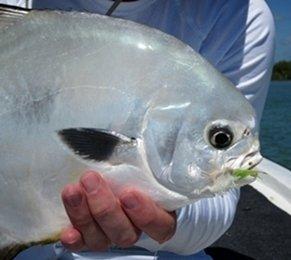permit lure, buggs fishing